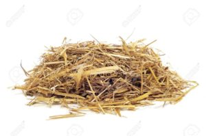 12062161-a-pile-of-straw-on-a-white-background-stock-photo-straw-hay-isolated